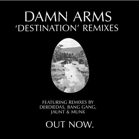 Damn Arms - Destination Remixes