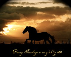 Deja vu (The Family Dog) Tags: sky clouds caballo cheval dramatic galope silhuet chaveaux