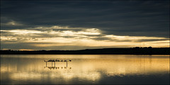 queenscliff-2012-w (pw-pix) Tags: sunset cloud seascape reflection bird water clouds landscape golden seaside australia shy victoria pole poles cliche geelong lateafternoon cliches queenscliff swanbay bellarinepeninsula ishouldbeashamedofmyself