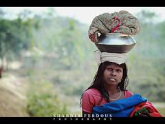 Portrait of a Woman (Shabbir Ferdous) Tags: portrait people woman girl female eyes photographer shot sylhet bangladesh bangladeshi ef70200mmf28lisusm canoneos5dmarkii shabbirferdous sirmongol teagardenlabor wwwshabbirferdouscom shabbirferdouscom