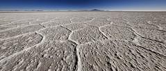 (Arrigo Ceramista) Tags: panorama bolivia hugin salardeuyuni enblend sigma1020 nikond80 faustodisciullo uyunisaltflat reservanaturaleduardoavaroa