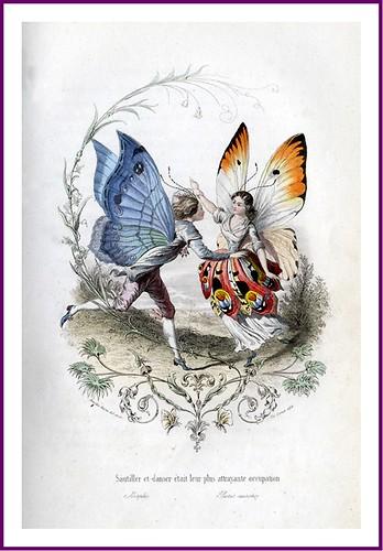 009--Les Papillons, métamorphoses terrestres des peuples de l'air- Pierre Amédée Varin