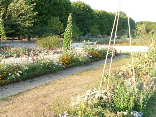 Jardin du Plantes
