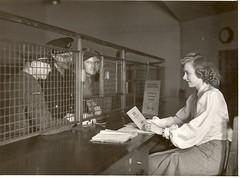 The Post Office Savings Bank and Polish forces (The Postal Museum) Tags: britain postoffice ww2 gpo worldwar2 secondworldwar generalpostoffice postofficesavingsbank polishforces
