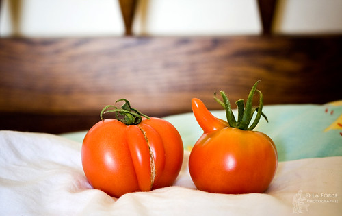 Vegetables And Sex 101