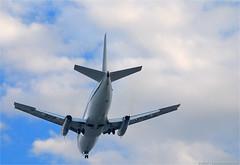 Só pra ver avião descendo...