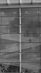 8 - 12 octobre 2009 Paris Rue Bruneseau  A travers les vitres... Gilles Hirzel Un monde flou (melina1965) Tags: windows blackandwhite bw paris reflection window stairs reflections october stair ledefrance noiretblanc faades reflet fentre reflets 2009 75012 escalier faade octobre fentres escaliers smrgsbord 12mearrondissement geniiloci artinternational quantae umbralaward thetravelexperience gilleshirzel unmondeflou