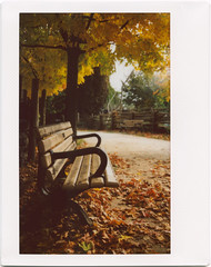 .. (Js) Tags: park autumn light fall bench golden fuji farm shade epson leafs cabbagetown instax 210 riverdalefarm v700 roidweek2009