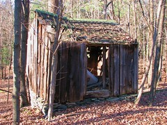 AN OLD SHED IN NOV 2009 (richie 59) Tags: houses usa house abandoned rural america outside wooden ruins country ruin oldbuildings upstateny oldhouse abandonedhouse upstatenewyork drives newyorkstate backroads countrylane 2009 sheds obsolete nystate abandonedbuilding abandonedbuildings 2000s hudsonvalley abandonedstructure ulstercounty abandonedhouses midhudsonvalley ulstercountyny oldsheds longabandoned nov2009 nov82009