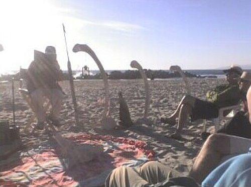 Venice Oceanarium reading Melville's Moby Dick at Venice Beach