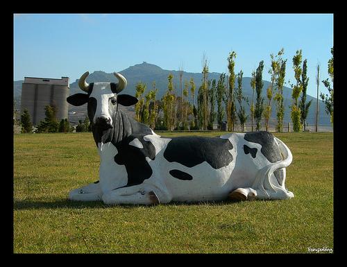Vaca del Parque Juan Carlos I