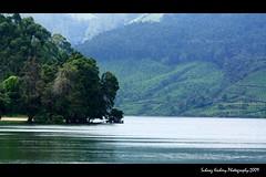Kundala Dam (suhaaz Kechery) Tags: india tree tourism water tea dam kerala dk greenery munnar kundala canon450d kechery dohakoottam suhaaz