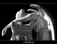 When the angels grieve (meletver) Tags: blackandwhite sculpture statue angel canon statues angels stanford soe grief canoneos500d