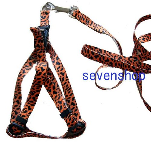 leopard harness by you.