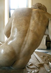 Dying Gaul, detail with back
