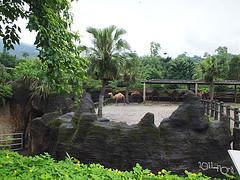 20110602酷節能體驗營 (18) (fifi_chiang) Tags: zoo taiwan olympus taipei ep1 木柵動物園 17mm 環保局 酷節能體驗營