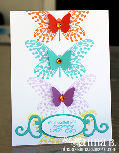 Butterfly Sympathy
