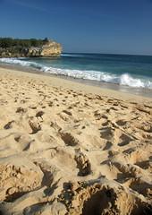 shipwreck beach (Donald Palansky Photography) Tags: beach shipwreck kauai donaldpalansky