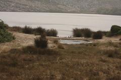 Greece 2011-6204-140