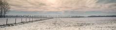 Winter_Beuningen-16 (stevefge) Tags: beuningen winter gelderland snow sneeuw trees bomen fields fence nederland netherlands nature nl natuur nederlandvandaag reflectyourworld panorama landscape
