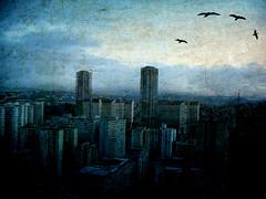 Nuestro apocalipsis (Lady Smirnoff) Tags: texture textura venezuela caracas lalamartinstexture