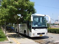 "[Coaches in Beijing] Yutong ZK6120R41E "" Lion's Star""  United Cresent #96669 Front-right at Zhanchun Bridge (tonyluan1990) Tags: man coach beijing  motorcoach yutong highdeck tourismcoach lionsstar chartercoach   unitedcresent"