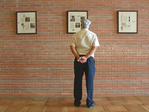 Mirant les informacions del Centre de Visites Torres