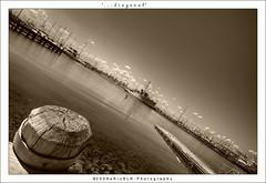 ...diagonal (i) Tags: sepia marina ship jetty diagonal williamstown uwa erizslr