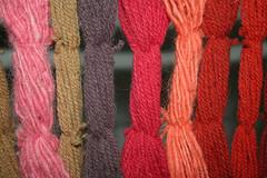 Colores de la cochinilla en lana Lanzarote Canarias (lanzarote rural) Tags: españa color lana spain natural lanzarote canarias dye tinte godoy cochineal naturaldye tintenatural mordiente juancazorla