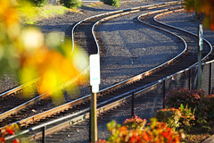Side By Side (Ian Sane) Tags: railroad autumn color fall oregon photoshop canon river ian eos track fallcolor bokeh mark curves tracks ii rails 5d riverfront salem sidebyside willamette sane scurve
