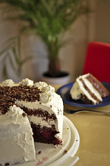 Schwarzwlder Kirschtorte / Black Forest Cake (Werner Kunz) Tags: birthday food coffee cake closeup breakfast bar dinner germany cherry dessert lunch deutschland restaurant essen cherries nikon europa europe drink eating fame creme eat german bakery brunch hungry kaffeetrinken schokolade blackforest deutsch werner kuchen torte blackforestcake schoko schwarzwlder kirschtorte kunz schwarzwlderkirschtorte nikond90 werkunz1