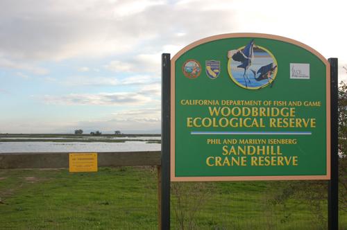 2woodbridge-eco-reserve.jpg