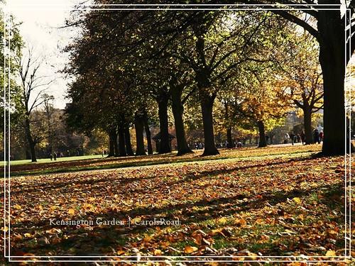 2009-11-07 Kensington Garden 008