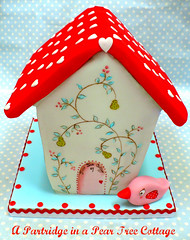 A Partridge in Pear Tree Cottage (neviepiecakes) Tags: bird cookie gingerbread birdhouse biscuit gingerbreadhouse fondant twelvedaysofchristmas partridgeinapeartree handpaintedcake redaquapink