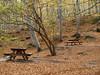 Moncayo en Otoño (Javier Garcia Alarcon) Tags: árboles banco paisaje bosque bancos árbol otoño moncayo