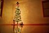 HDR Christmas Tree (JGo9) Tags: christmas wood tree canon eos lights snowman floor hard christmastree gifts ornaments hdr photomatrix t1i