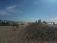 Sledding at Venice Beach