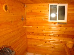 Shower IN the sauna!