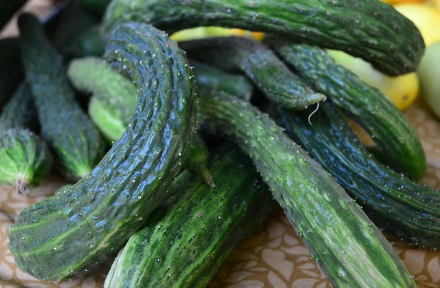Wrinkly Cukes