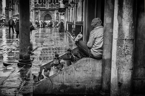 feathered friends (Daz Smith) Tags: dazsmith fujixt10 fuji xt10 andwhite bath city streetphotography people candid canon portrait citylife thecity urban streets uk monochrome blancoynegro blackandwhite mono man young sat birds feathered feathers wings flying romanbaths pigeons
