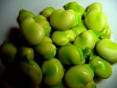 Broad Beans - Freshly picked and shelled to eat (MrLeica.com (MatthewOsbornePhotography)) Tags: green garden vegetable fresh homegrown broadbeans