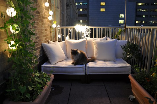 nightime balcony garden