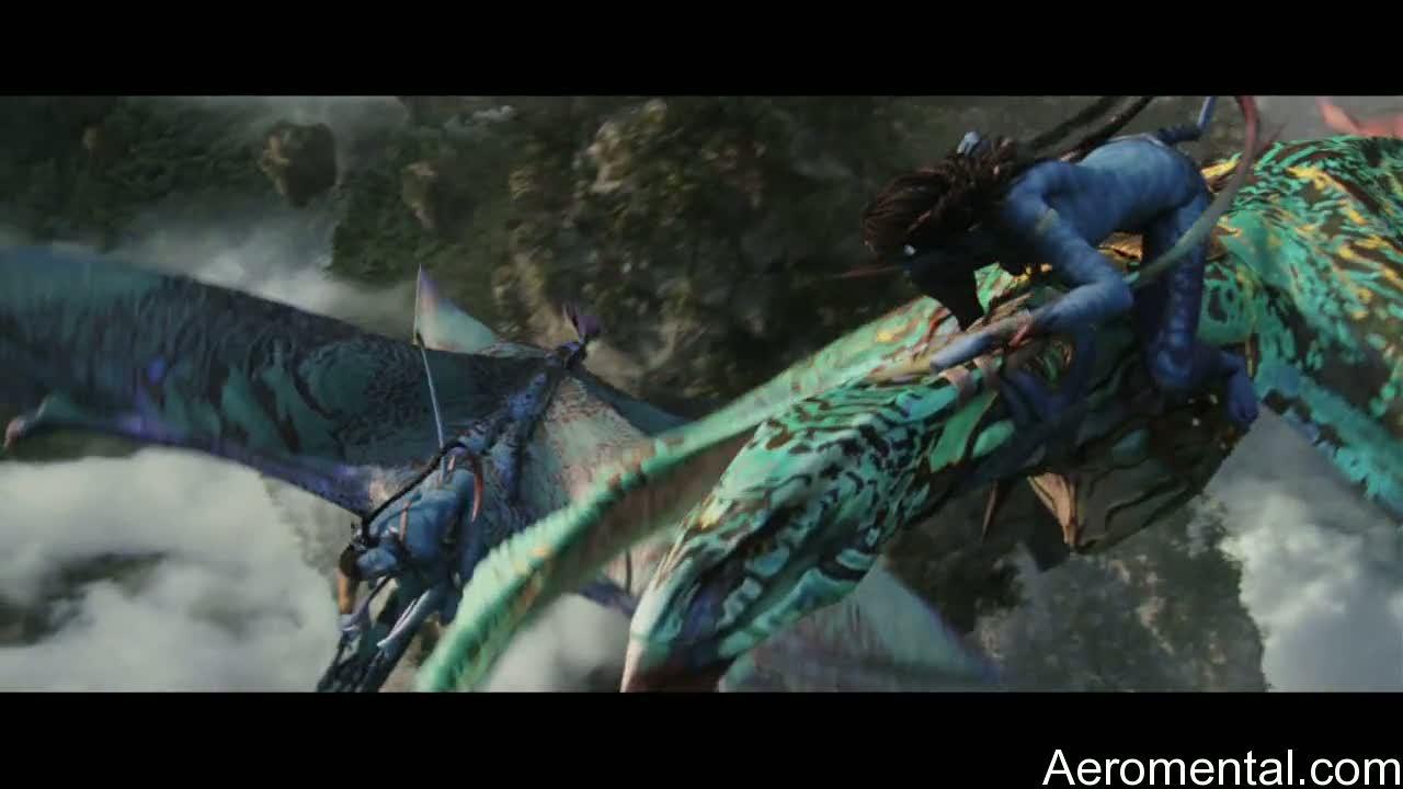 Avatar montando Bansheerays