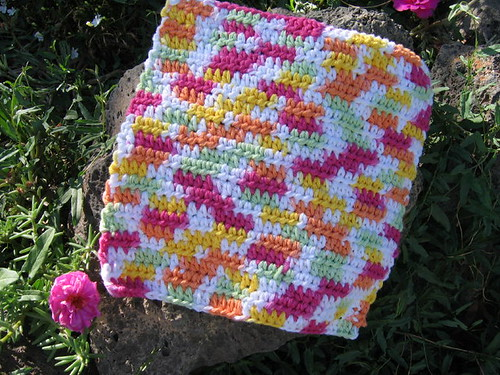 HDC Dish Cloth