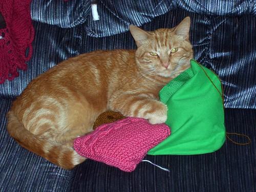 Thz Knittin Iz Mine!
