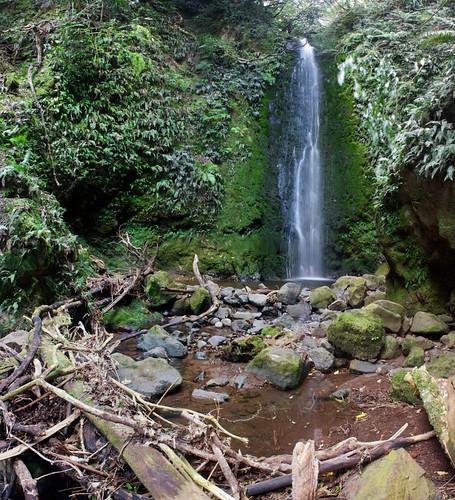 Nichols Falls wide