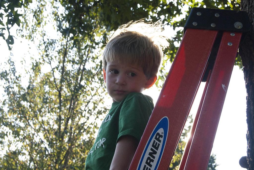 Matt on ladder II