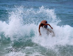 hawaii amateur skimboard league westside shoot out, 19 sep 09 (phlatphrog) Tags: skim skimboard hasl