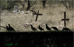 Last Respects (L Geoffroy) Tags: old travel arizona southwest color colour detail art history halloween monument cemetery grave graveyard grass animal animals angel clouds rural america photoshop garden dark landscape dead outdoors death countryside ancient memorial peace cross desert image symbol antique sony rip headstone cemetary country hill religion tomb tombstone decoration ground az scene eerie romance funeral burial rest gloom decor mourn gravesite oldwest cs4 abigfave dslra350 dslr350 sonydslra350 lgeof