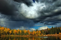 come rain or come shine (klaus53) Tags: autumn trees lake colors rain alaska clouds nikon shine herbst wolken bume farben steesehighway superaplus aplusphoto platinumheartaward vanagram yourwonderland blinkagain bestofblinkwinners blinkagainsuperstars